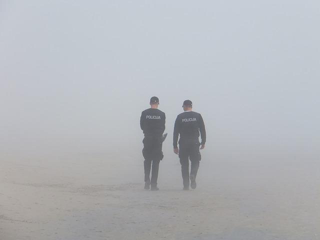 Quali sono le funzioni della polizia?